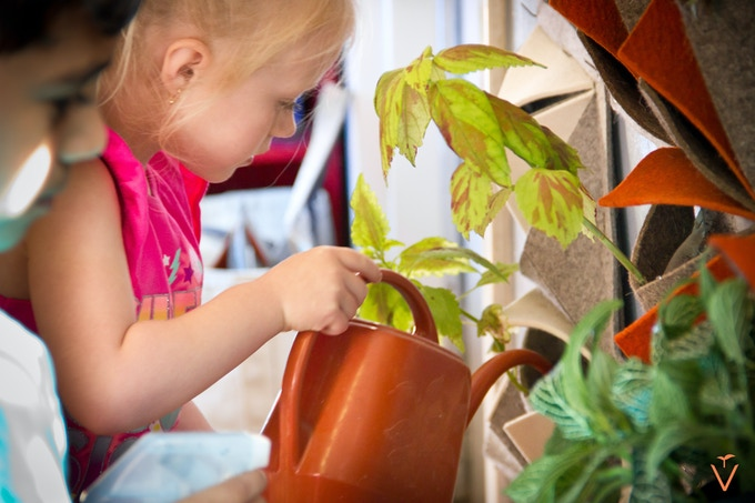 Vàs is a great addition to any pre-school environment, teaching responsibility and a love for nature!