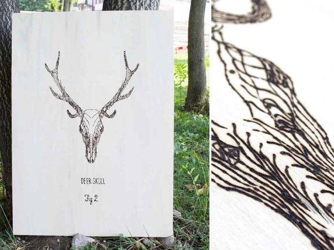 Deer Skull - Fig.2 from Skulls Series by Francesca Padovan