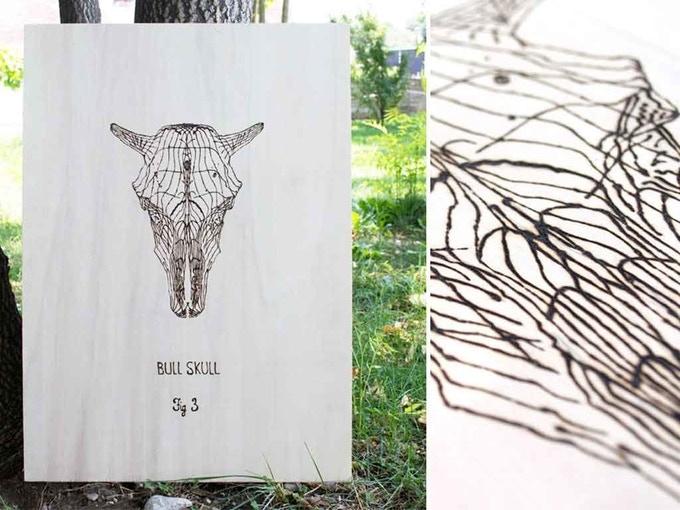 Bull Skull - Fig.3 from Skulls Series by Francesca Padovan