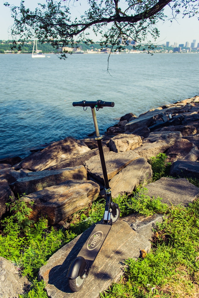 Glion Scooter relaxing on shore of the Hudson River.  Paul, NY.