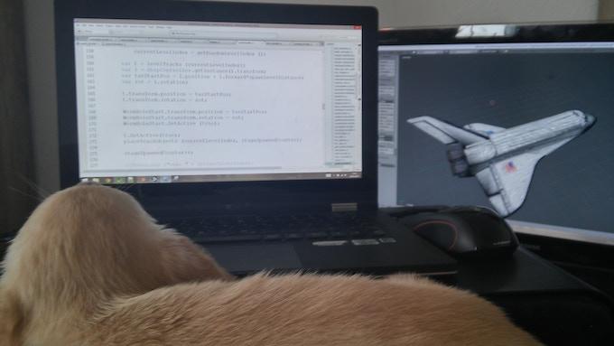 Teaching my dog how to code.