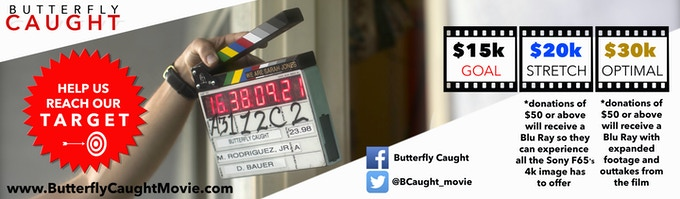 butterfly caught 2017 blu ray