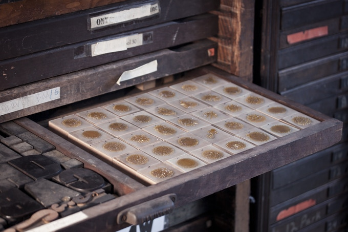 Letterpress glyphs in a type tray.