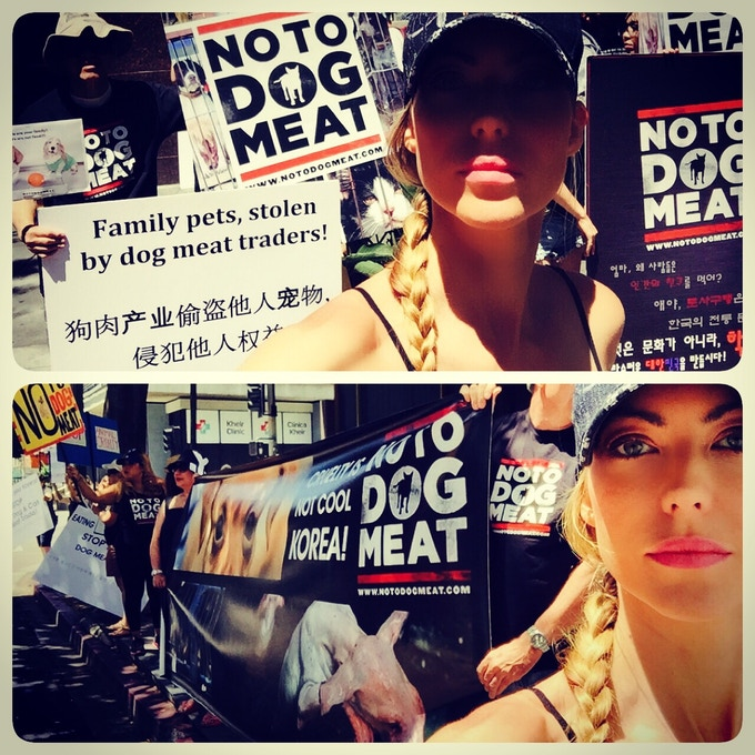 Protesting the Boknal Dog and Cat meat festival of Korea in Los Angeles, California.