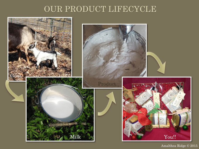 Our product lifescycle
