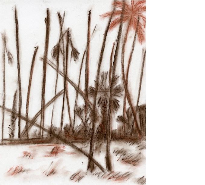 W (Tamil) War, T. Shanaathanan, dry pastel on paper, 2015