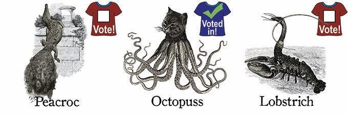 10 Votes0 Votes