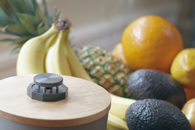 Fruit Fly Abatement