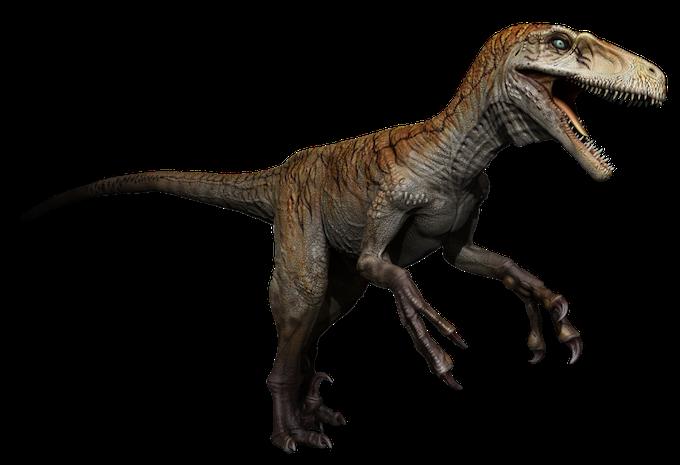 utahraptor (non feathered)