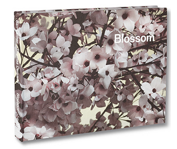 "For £50 - a signed copy of ""Blossom"" by Ben Lerner (poems) and Thomas Demand (photographs)"
