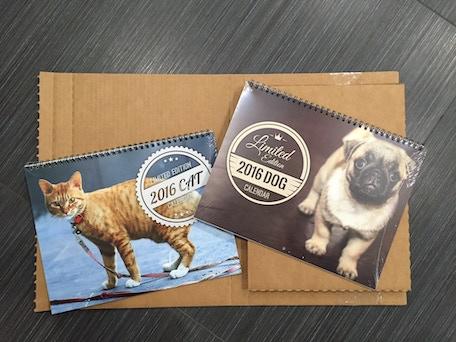 2016 Cats vs. Dogs Calendar