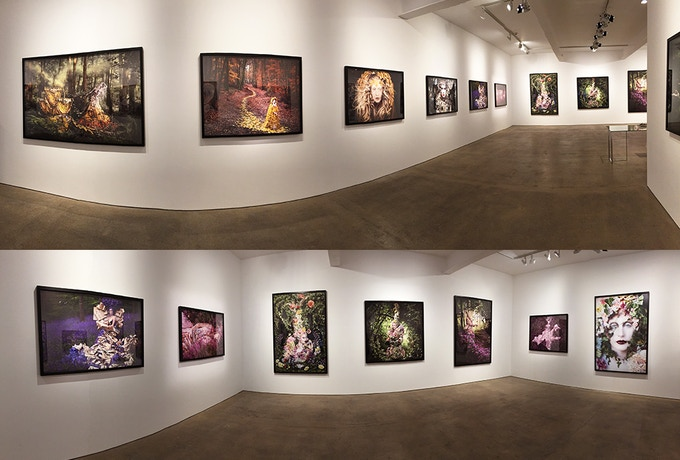 'Wonderland' London Solo Show at Mead Carney Gallery June 2015