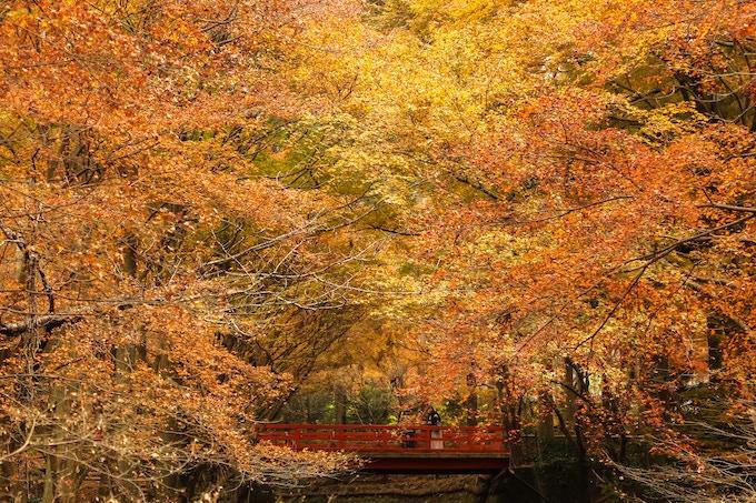 Tempel Sanzenin, Nord-Kyoto