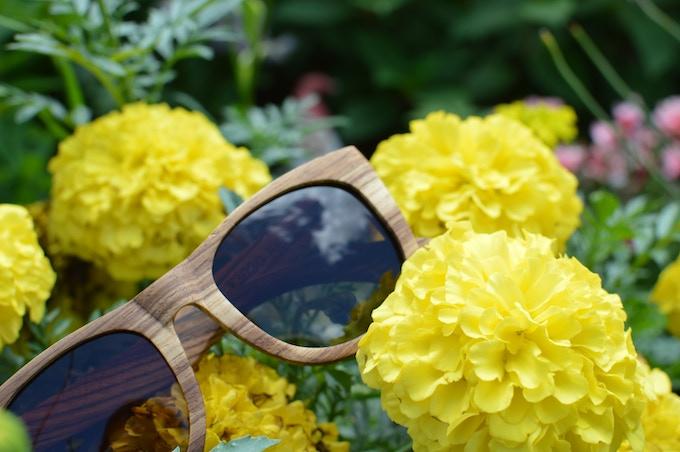 wooden sunglasses canada
