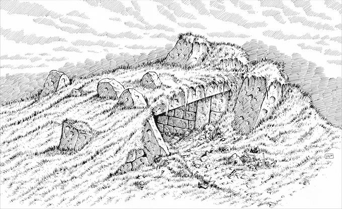 Illustration by William McAusland
