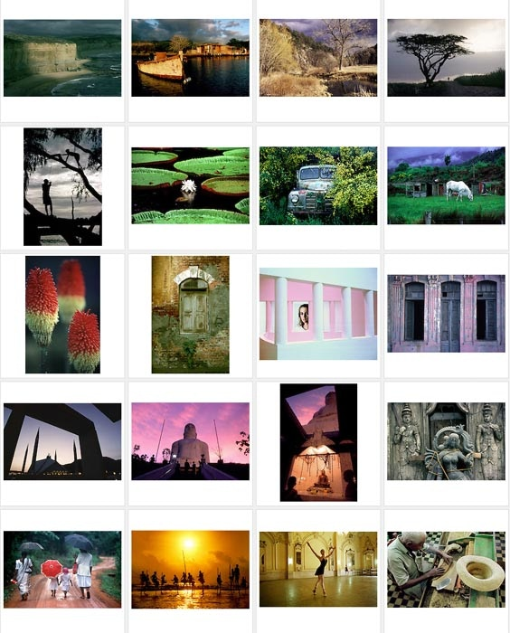 An 8x12 print of my choosing from one of my previous book projects. Some of which are shown above.