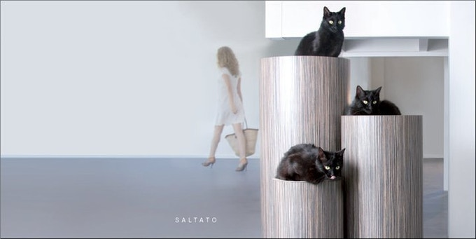 Cats on their Saltato Furniture
