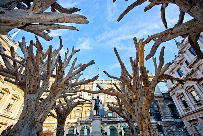 From the mountains of rural China to the heart of London, join the RA in creating an incredible piece of public art with Ai Weiwei.