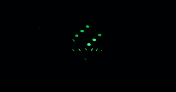 Matrix dice in the darkness.