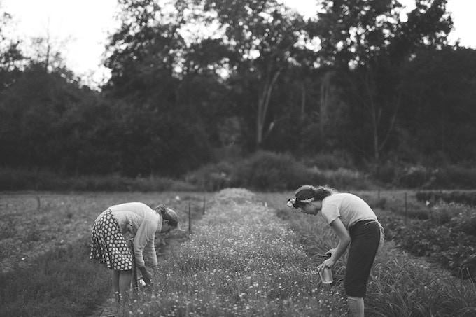Jill and Abby gathering fresh herbs