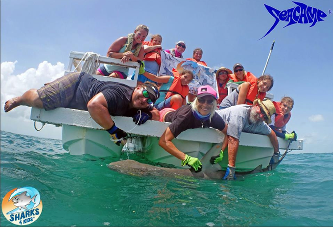 Students Tagging and 8 ft Bull Shark ( Seacamp/Sharks4Kids)