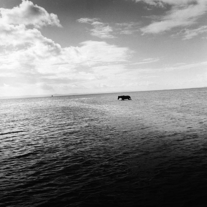 All Saints Bay, Bahia, 2004