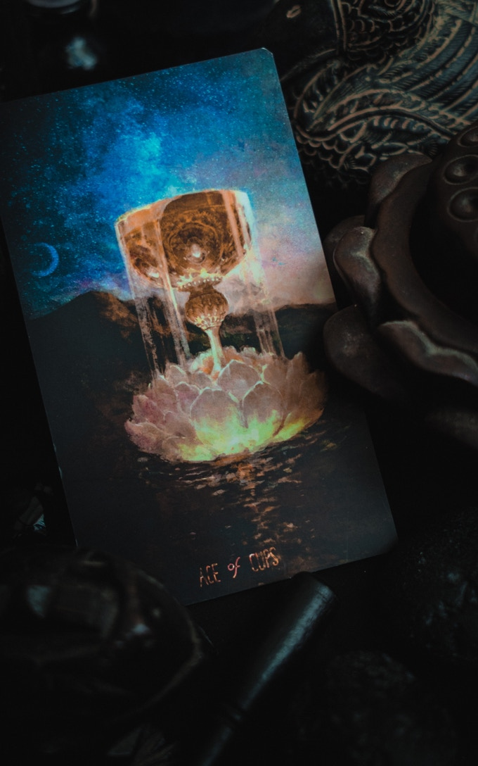 The Ace Of Cups Features A Lotus Drifting Along The Muddy