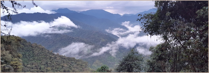Overview of the Tandayapa valley.