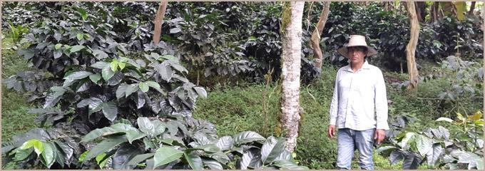 Leo de la Cruz at Tambo Quinde.