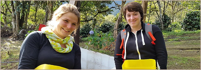 Students from France on a trial run of the Tambo Quinde coffee tour.