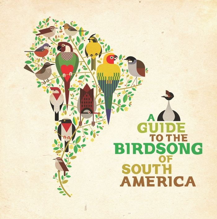 Art meets activism! An album of fresh South American music, each track inspired by the song of endangered birds.