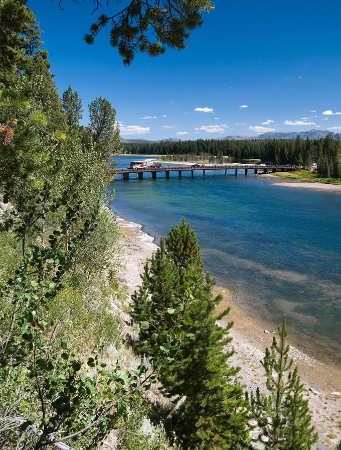 Fishing Bridge now spans the Yellowstone River just north of where it exits Yellowstone Lake, and trees and other vegetation line the steep west riverbank in the foreground.