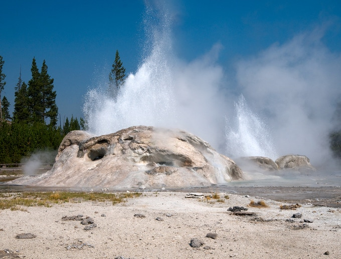 The eruptions of Grotto Geyser can last anywhere from one to 24 hours and can splash water more than 40 feet high. The length of Grotto's eruption will often determine the duration of the nearby Rocket Geyser, seen here in eruption with the Grotto.