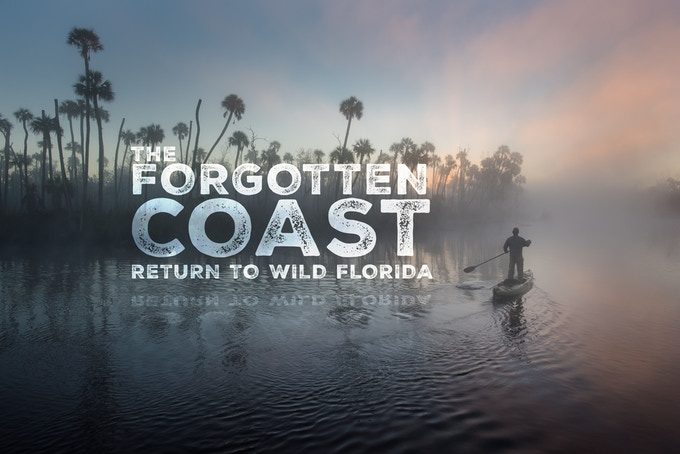DVD Cover of The Forgotten Coast