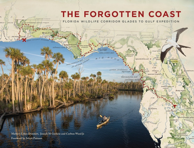 Book Cover of The Forgotten Coast. Available in Softcover and Hardcover