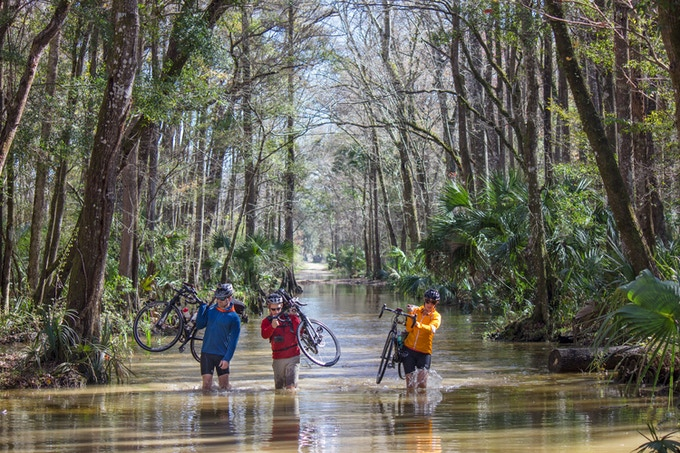 The Expedition team carries their bikes through a flooded stretch of road in a coastal forest. Photo by Alex Morrison