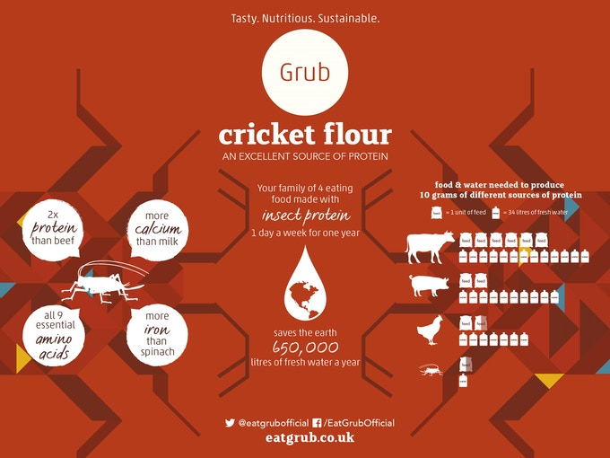Why we should all be eating crickets