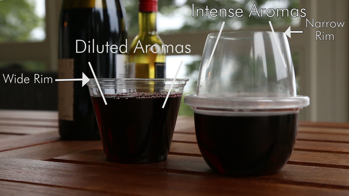 A rim wider than its base, dilutes aromas, while a rim narrower than its base, intensifies aromas