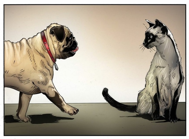 "PUGLY #1 Color Tease - ""Dog Meets Cat"""