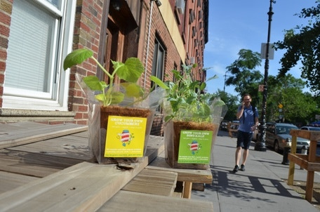 Takeout grow kits grow fresh organic food anywhere by robyn jasko kickstarter - Biosfera the passive house that fits anywhere ...