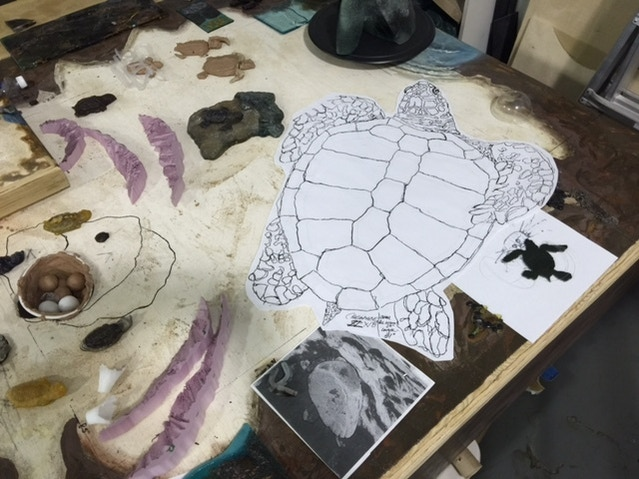 Layout on the proto type sea turtle base