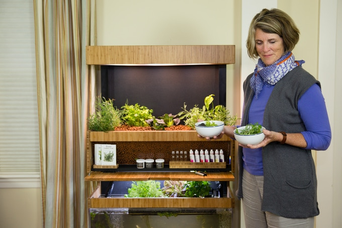 A Grove Ecosystem provides you with fresh, healthy produce, brings light and fresh air into your home, and empowers you to understand how to grow your own food.