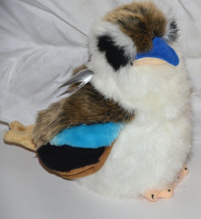 A close-up of the kookaburra