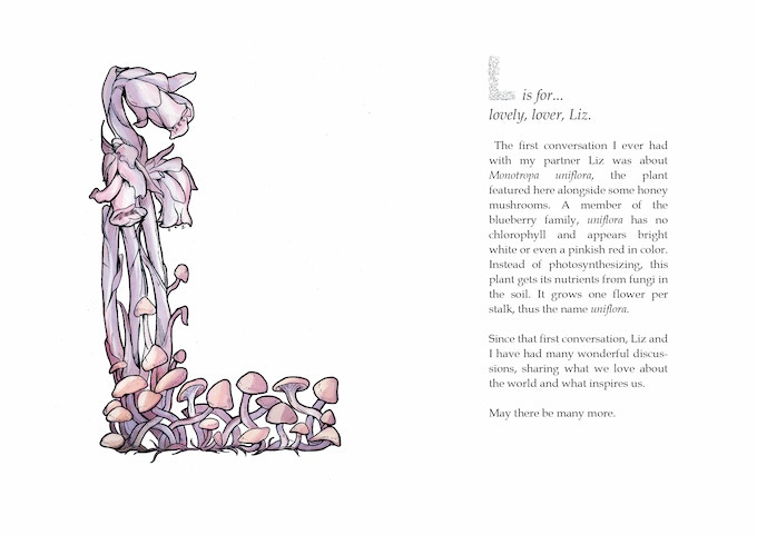 A sample spread from the book, showing the letter and a brief explanation.