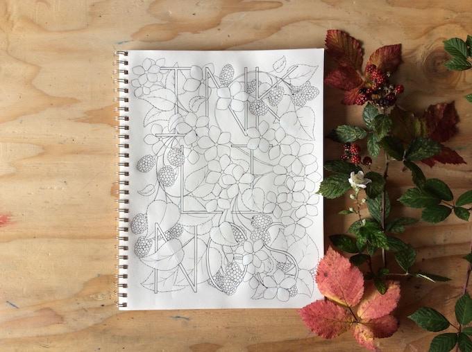 The cover illustration for Botanical Inklings