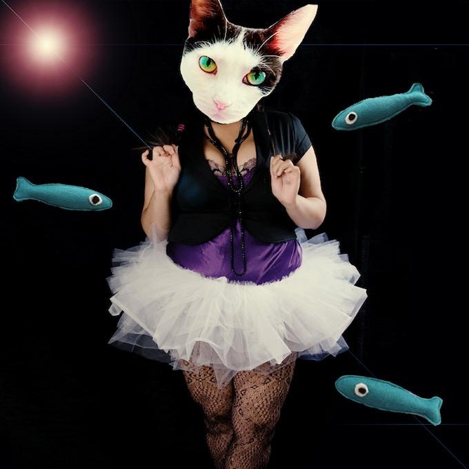 Kitties love fishies