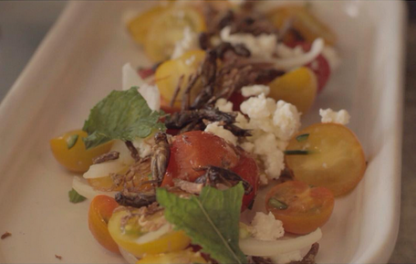 Tomato Salad with crickets for crunch at Dai Due in Austin, TX.