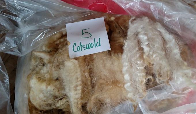 Cotswold fleeces