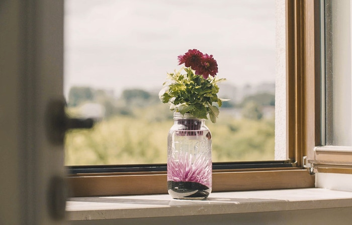 The coolest Mason jar ever as both a Hyroponic and Aquaponic unit!