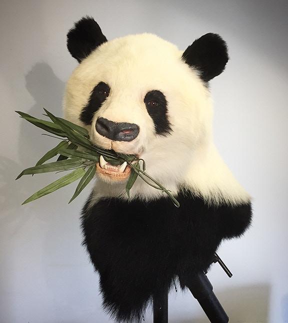 Panda pedestal mount (re-creation)! Made by Ken Walker!